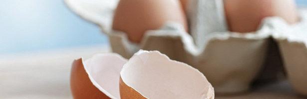 Яичная скорлупа может помочь росту костей