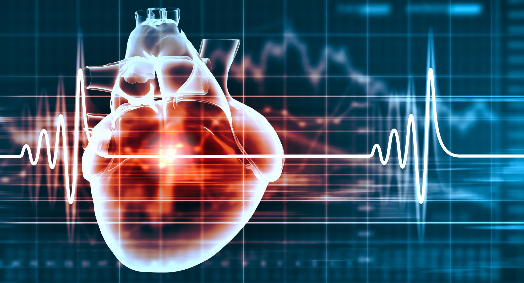 ElectroMap un nuovo software innovativo che può rendere più facile individuare malattie cardiache potenzialmente letali e portare a miglioramenti