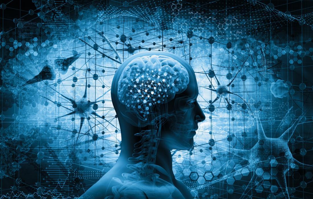 Non dovrebbe sorprendere che i benefici cognitivi derivanti dagli allenamenti si accumulino anche per ottenere guadagni cognitivi a lungo termine