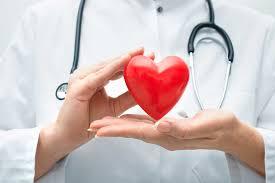 Electromap: анализ и картографирование сложных кардиологических данных