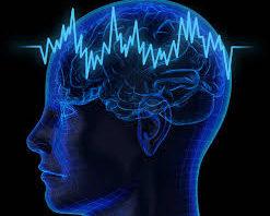 Физическая активность приводит к когнитивным улучшениям